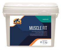 2112059150006_7280_1_muscle_fit_76da50c9.jpg